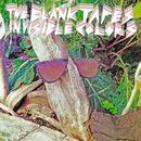 Invisible Colors thumbnail