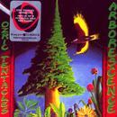 Arborescence thumbnail