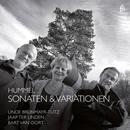 Hummel: Sonatas & Variations thumbnail