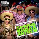 Spring Break Anthem thumbnail