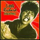 Little Richard: Essentials thumbnail