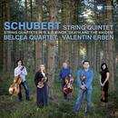 Schubert: String Quintet, Quartet in G, Quartet in D minor thumbnail