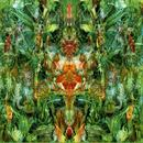 Emerald Aether: Shape Shifting/Reconstructions Of Irish Music thumbnail
