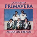 Ando Sin Frenos thumbnail