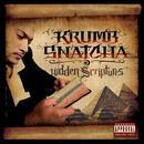 Hidden Scriptures thumbnail