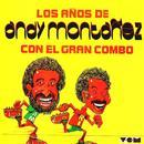 Los Anos De Andy Montanez thumbnail