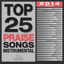 Top 25 Praise Songs Instrumental 2014 thumbnail