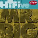 Rhino Hi-Five: Mr. Big thumbnail
