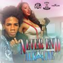 Never End - Single thumbnail