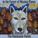 In The Forest Of Missing Planes thumbnail