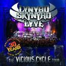 Lynyrd Skynyrd - Lyve thumbnail