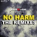 No Harm (The Remixes) thumbnail