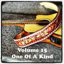 Volume 15 - One Of A Kind thumbnail