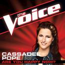 Are You Happy Now? (The Voice Performance) (Single) thumbnail