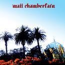 Matt Chamberlain thumbnail