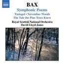 Bax: Symphonic Poems thumbnail