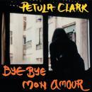 Bye Bye Mon Amour thumbnail