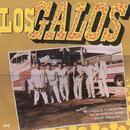 Los Galos thumbnail