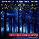 Sonidos Naturales para Dormir: Bosque a Medianoche Con los Ríos y los Truenos thumbnail