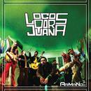 Armando (Single) thumbnail