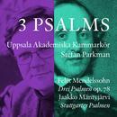 Mendelssohn & Mantyjarvi: 3 Psalms thumbnail