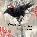 Garden Ruin (Bonus Track Version) thumbnail