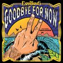 Goodbye For Now (Single) thumbnail
