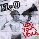 Use Your Voice thumbnail