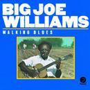 Walking Blues thumbnail