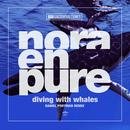 Diving With Whales (Daniel Portman Remixes) (Single) thumbnail