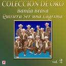 Coleccion De Oro, Vol. 2 - Quisiera Ser Una Lágrima thumbnail
