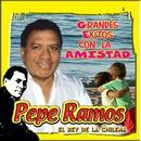 Grandes Exitos Con La Amistad thumbnail