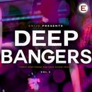 Deep Bangers, Vol. 5 thumbnail