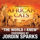 The World I Knew (From Disneynature African Cats) thumbnail