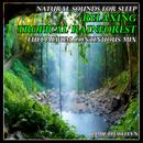 Natural Sounds for Sleep: Tranquil Birdsong and Sounds from the Forest thumbnail
