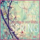 Winter Turns Into Spring, Vol. 1 - Selection Of Deep House thumbnail