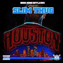 Houston thumbnail