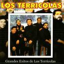 Grandes Exitos De Los Terrícolas thumbnail