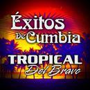 Cumbias thumbnail