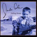 Falling Home thumbnail