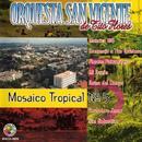 Mosaico Tropical No. 5 thumbnail