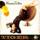 Tiger thumbnail