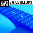 The Very Best Of Big Joe Williams (Live) thumbnail
