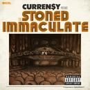 The Stoned Immaculate (Deluxe Version) (Explicit) thumbnail