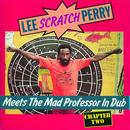 Lee Perry - Meets The Mad Professor thumbnail