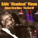 Kidney Stew Blues - The Best Of thumbnail