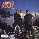 Naughty By Nature thumbnail