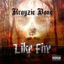 Like Fire - Single thumbnail
