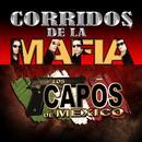 Corridos De La Mafia thumbnail