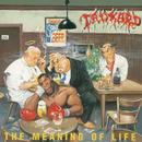 The Meaning of Life (Bonus Track Edition;2005 Remastered Version) thumbnail